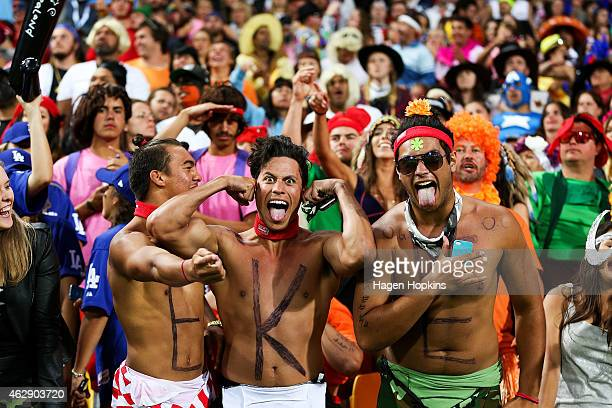 Fans enjoy the 2015 Wellington Sevens at Westpac Stadium on February 7 2015 in Wellington New Zealand