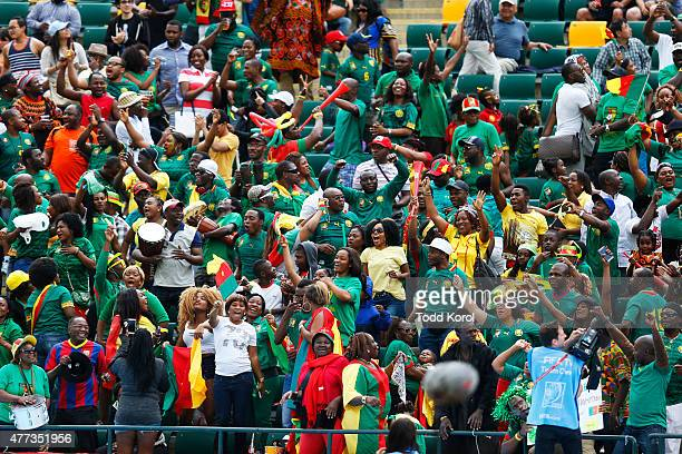 Fans from Cameroon celebrate after the team's second goal during the FIFA Women's World Cup Canada Group C match between Switzerland and Cameroon at...