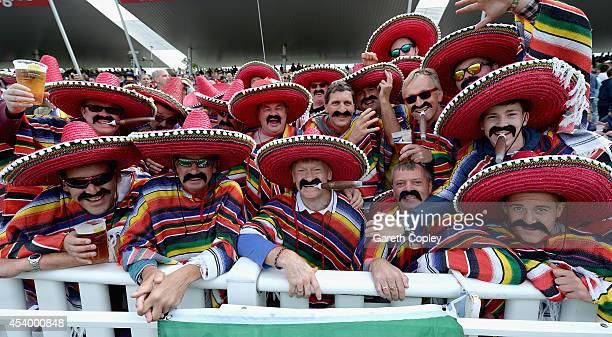 Fans in fancy dress during the Semi Final Natwest T20 Blast match between Birmingham Bears and Surrey at Edgbaston on August 23 2014 in Birmingham...