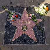Marvel Comics Legend Stan Lee Dies At Age 95