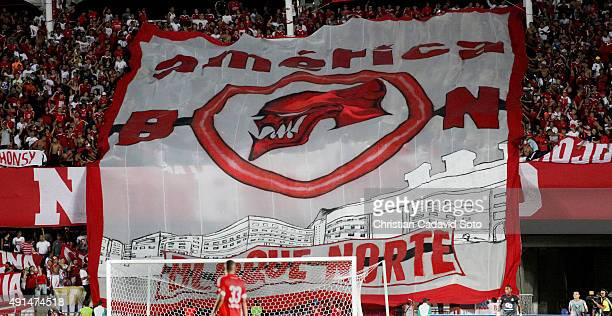Fans of AmeŽrica de Cali display a huge flag during a match between America de Cali and Leones FC as part of 13th round of second leg of Torneo...