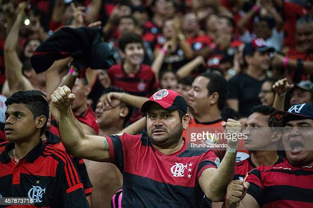 Fans of Flamengo celebrates a scored goal during the Brasileirao Series A 2014 match between Flamengo and Botafogo at Arena da Amazonia on October 25...
