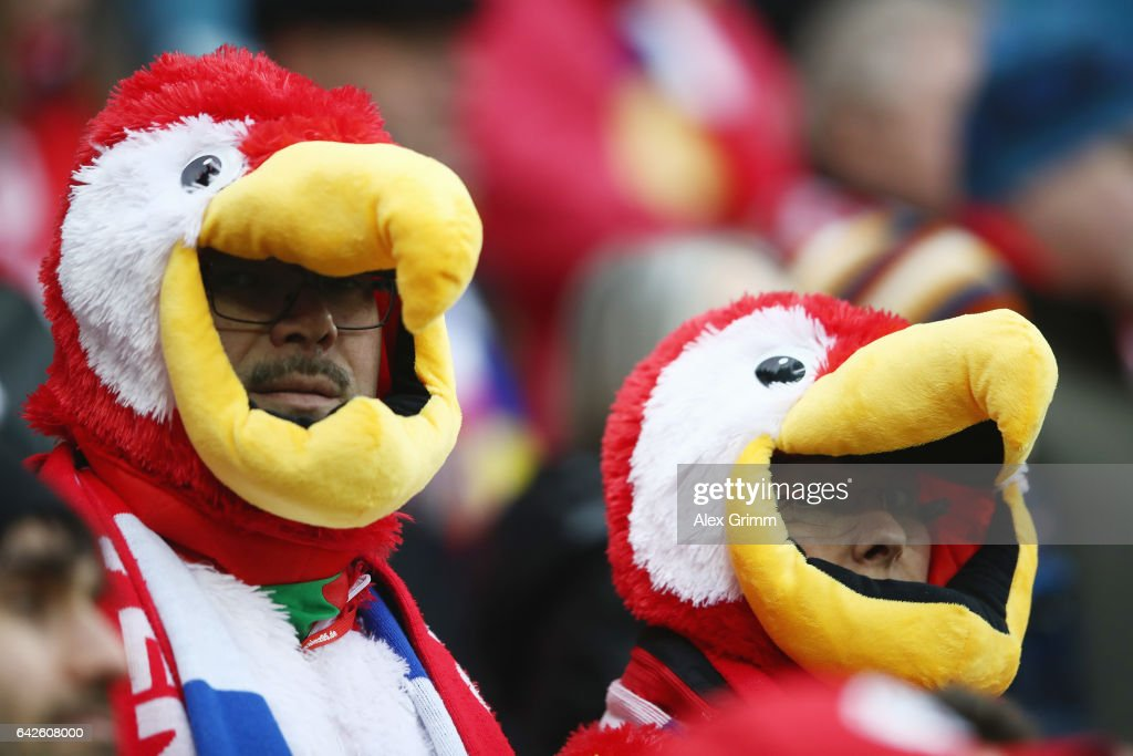 Fans of Mainz are dressed up for carnival during the Bundesliga match between 1. FSV Mainz 05 and Werder Bremen at Opel Arena on February 18, 2017 in Mainz, Germany.