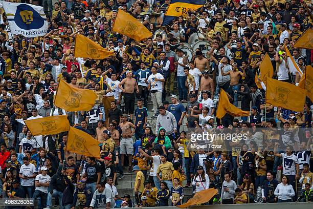 Fans of Pumas cheer for their team during the 16th round match between Pumas UNAM and Queretaro as part of the Apertura 2015 Liga MX at Olimpico...
