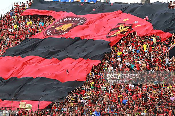 Fans of Sport Recife cheer before a match between Sport Recife and Figueirense as part of Brasileirao Series A 2014 at Ilha do Retiro Stadium on...