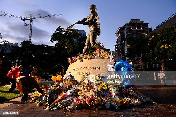 Fans of the late Tony Gwynn of the San Diego Padres pay tribute to him at his commemorative statue at Petco Park on June 16 2014 in San Diego...