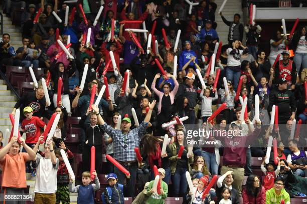 Fans of the Raptors 905 cheer during the game against the Canton Charge at the Hershey Centre on April 8 2017 in Mississauga Ontario Canada NOTE TO...