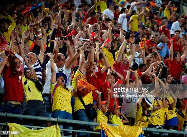 Fans show their support during the international friendly match between Spain and Colombia at Nueva Condomina Stadium on June 7 2017 in Murcia Spain