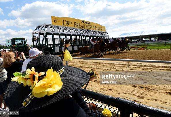 Fans watch as horses break from the gate during the first race prior to the 139th running of the Preakness Stakes at Pimlico Race Course on May 17...