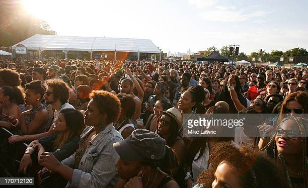 Fans watch as Solange performs during the 2013 Northside Festival at McCarren Park on June 16 2013 in the Brooklyn borough of New York City