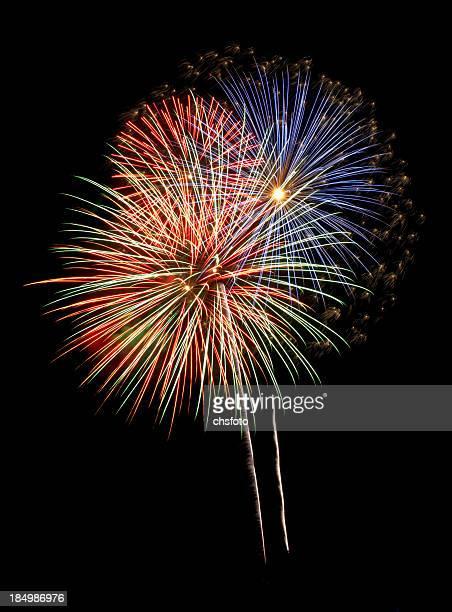 Fantastic Flock Fireworks Burst