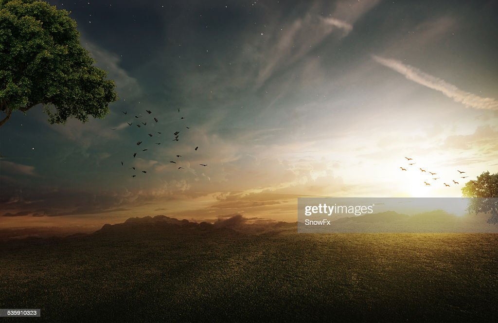 Fantasy field : Stock Photo