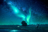 A fantasy landscape with a star filled sky lit by northern lights, a deer and a fawn is standing to the right in the picture. A composition of multiple different images.