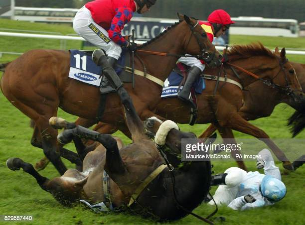 Far Pavilions falls with jockey Jim Crowley in The Samsung Scottish Champion Hurdle