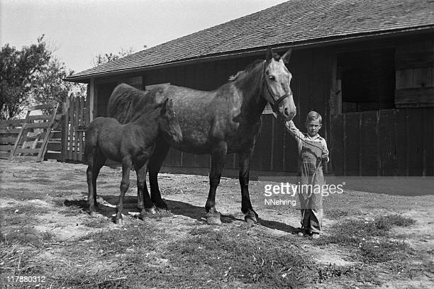 farm boy with mare and foal in barnyard 1935, retro