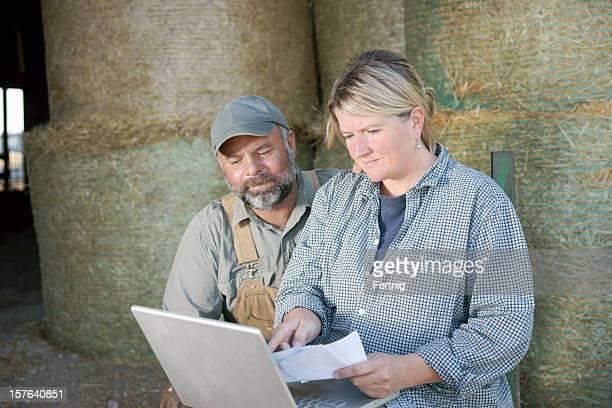 Farm couple, vérification des informations sur un ordinateur portable