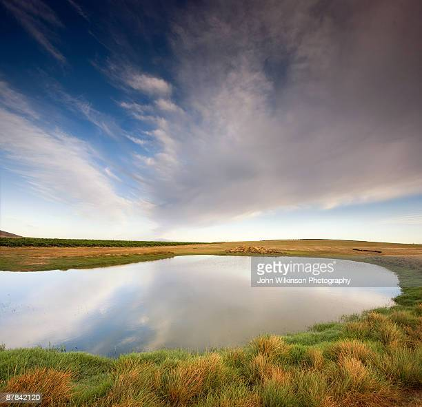 Farm dam with clouds and reflections