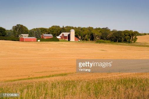 ファームフィールド・バーンズ、ミネソタ、田園中西部米国農業の風景