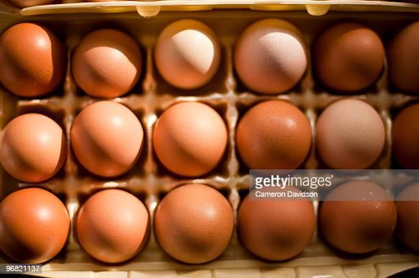 Farm Fresh Organic Brown Eggs