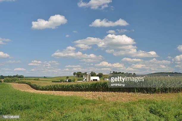 Farm in Lancaster