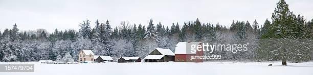 Farm In inverno Panorama