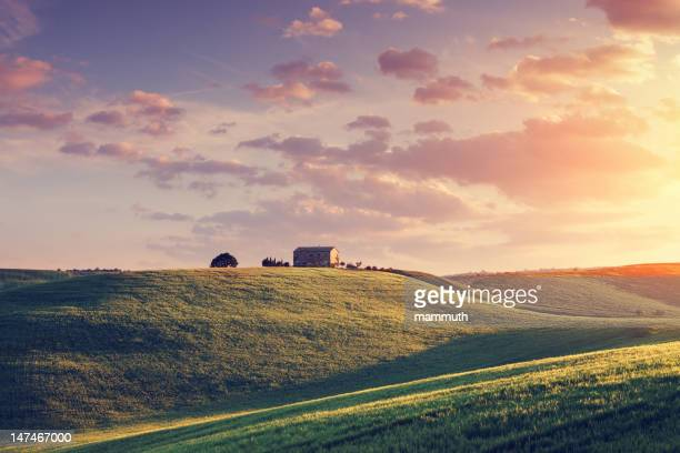 Farm in Tuscany at sunset