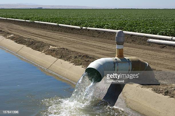 Farm Irrigation Water Pump and Water Being Pumped Into Canal