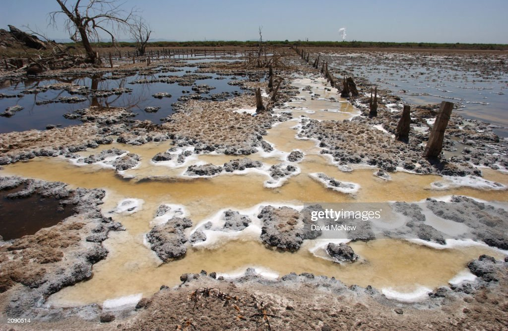 the salton sea essay The salton sea is about to shrink drastically after 15 years of delays and broken promises, california is far behind on plans for heading off a costly environmental disaster.