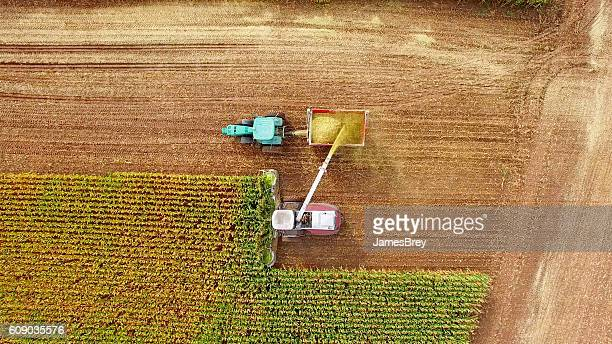 Farm machines harvesting corn in September, aerial view