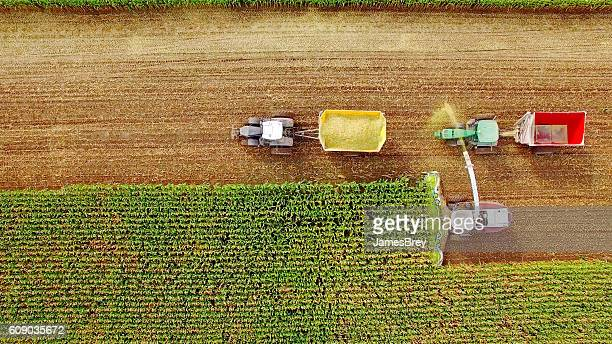 Farm machines harvesting corn in September, viewed from above