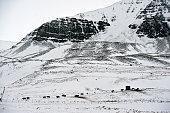 Farm Near Budardalur Snæfellsnes peninsula Iceland