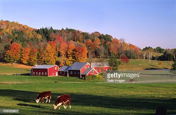 Farm near Thetford, Vermont, USA