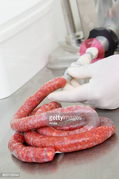 preparation of merguez sausage in a farm