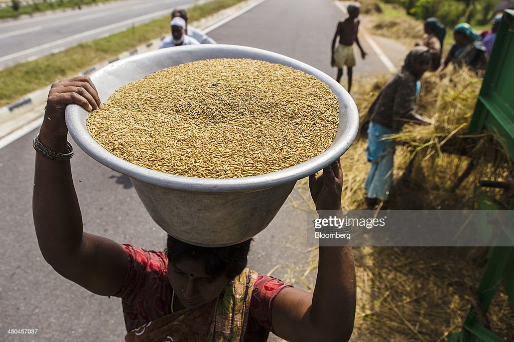 A farm worker carries a bowl of rice grain from a threshing machine during a crop harvest near Thimmapuram, Tamil Nadu, India, on Thursday, Nov. 14, 2013. Record onion prices and the soaring cost of rice and coriander are frustrating Reserve Bank of India Governor Raghuram Rajans battle to curb inflation while supporting growth in Asias third-largest economy. Photographer: Prashanth Vishwanathan/Bloomberg via Getty Images