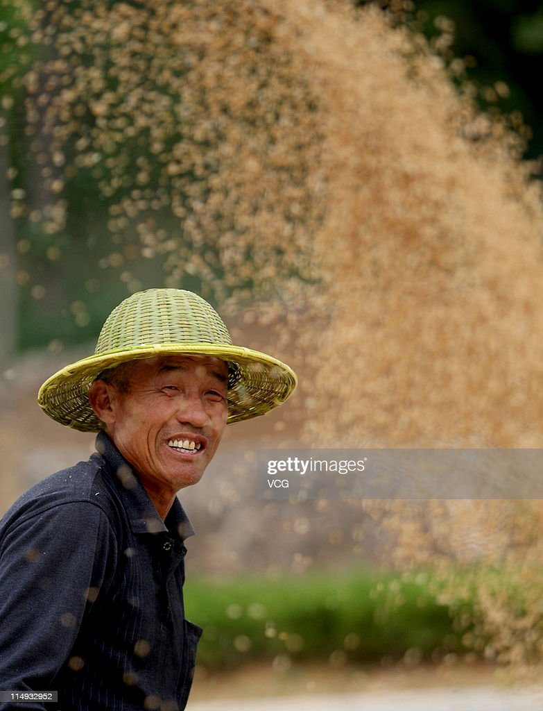 A farm worker harvests wheat in a field on May 29, 2011 in Huaibei, Anhui Province of China. Anhui province will put 125,000 combine harvesters into this wheat harvest season, and it's estimated that the work will be completed basically in 10 days.