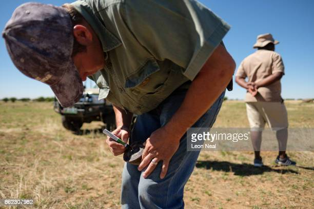 A farm worker marks a trimmed rhino horn before it is weighed and measured at the ranch of rhino breeder John Hume on October 16 2017 in the North...
