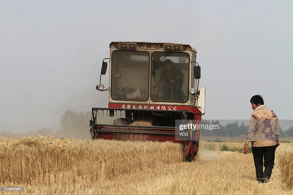 Farm workers harvest a field of wheat with a combine harvester on May 29, 2011 in Mengcheng County, Anhui Province of China. Anhui province will put 125,000 combine harvesters into this wheat harvest season, and it's estimated that the work will be completed basically in 10 days.