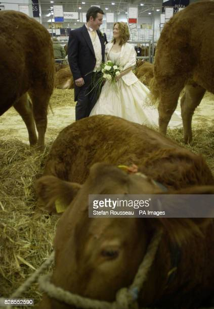 Farm workers Neil Lloyd and Sally Burnett from Luston near Leominster Herefordshire prepare to have their marriage blessed at the agricultural show...