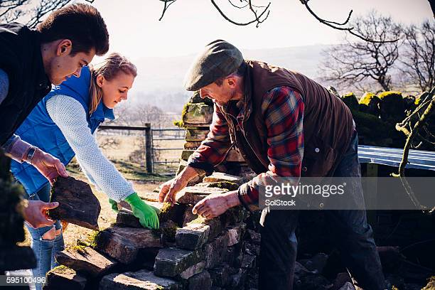 Farmer and Children Repairing an Old Stone Wall
