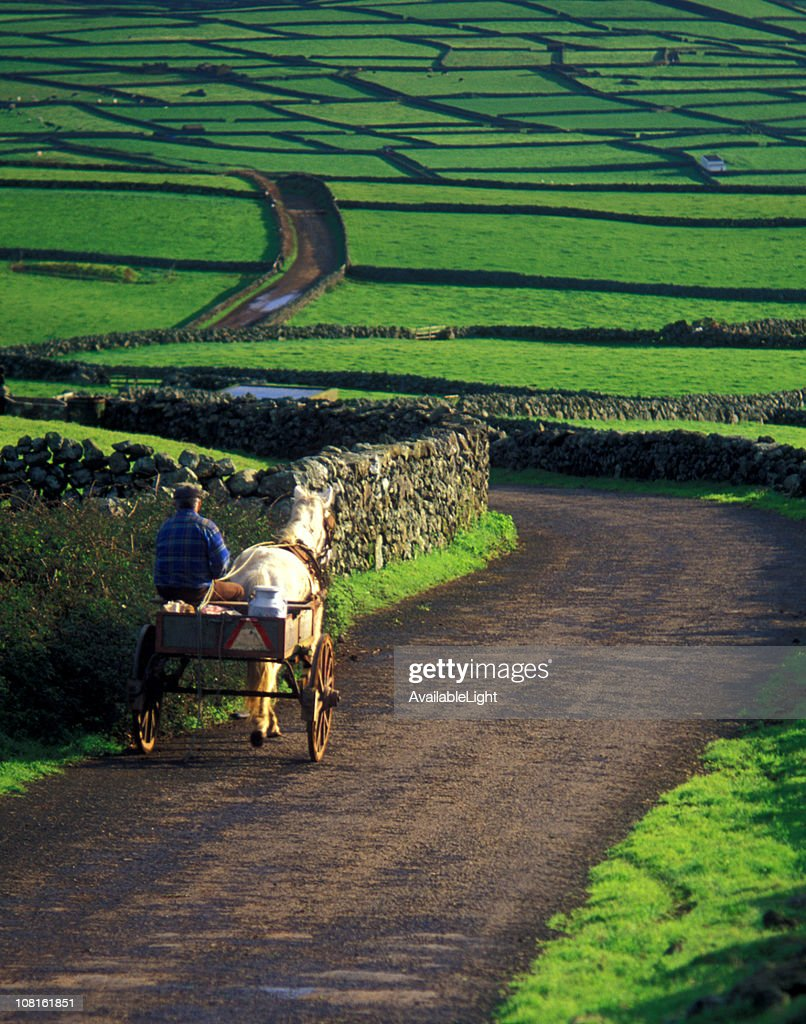 Farmer and Donkey with Buggy Walking Down Rural Road : Stock Photo