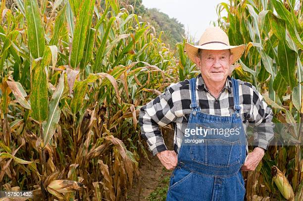Farmer and his corn crop