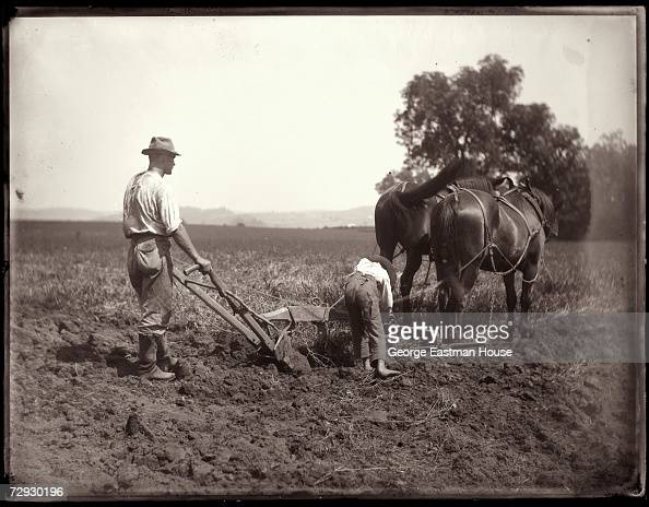 A farmer and his son plow a field with the head of a pair of horses 1886