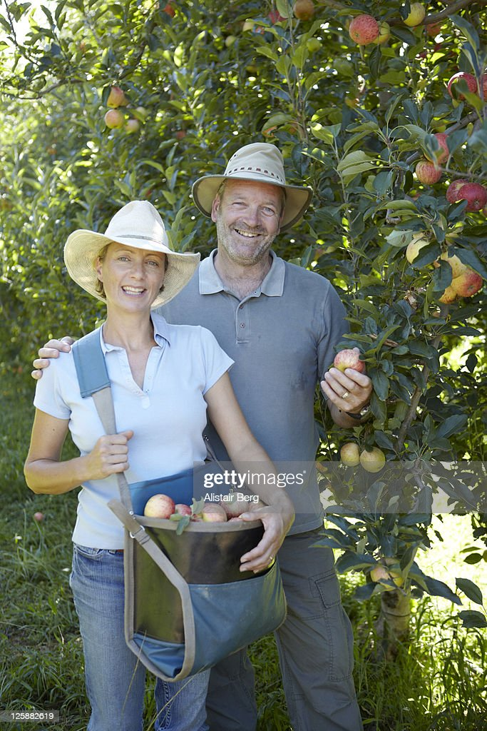Farmer and his wife in apple orchard : Stock Photo
