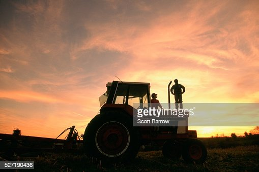 Farmer and son watching the sunset : Stock Photo