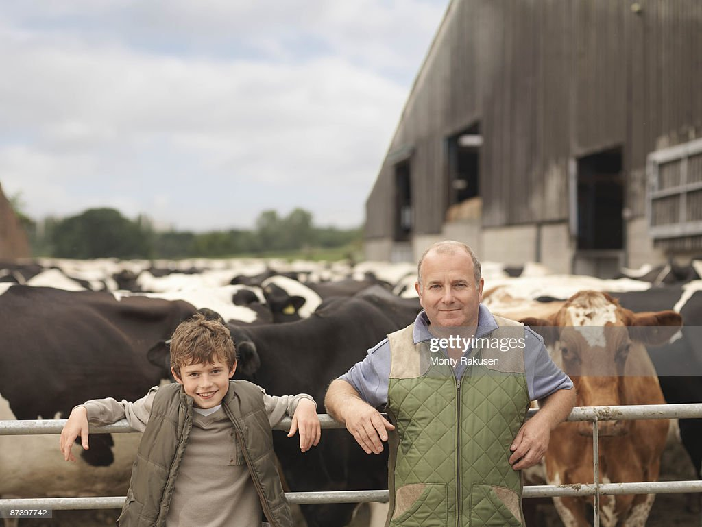 Farmer And Son With Cows