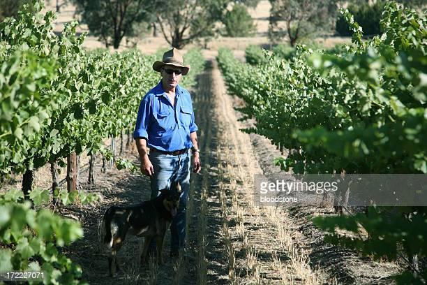 Farmer and vineyard