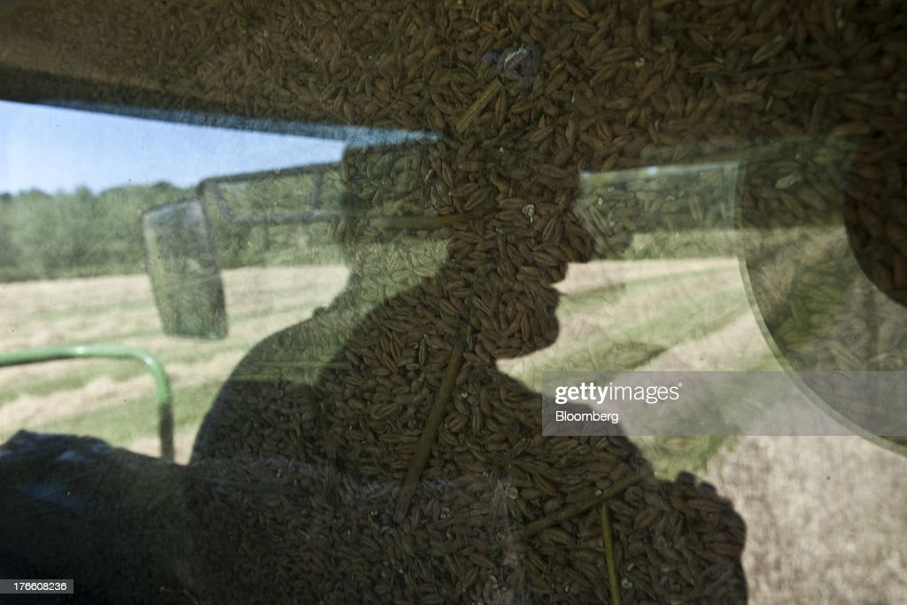 A farmer and wheat grain is reflected in the window of a combine harvester cab as he harvests a field of triticale wheat in Ceras, southwest France, on Thursday, Aug. 15, 2013. French farmers harvested better-quality wheat than expected north and east of Paris, making up for low protein content in the southwest and raising confidence the grain will meet export requirements. Photographer: Balint Porneczi/Bloomberg via Getty Images