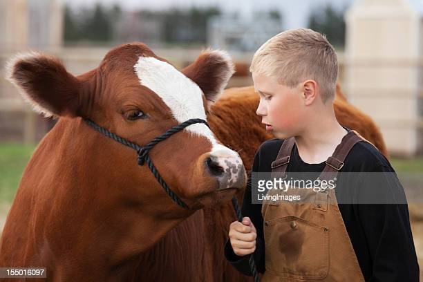 Farmer boy wearing overalls leading his calf