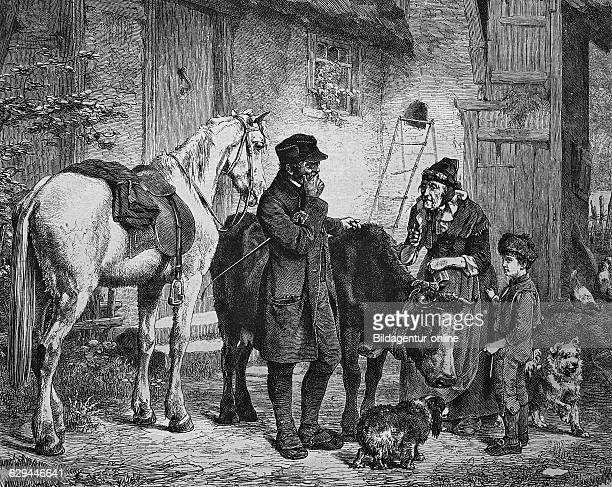 Farmer caring for a sick cow historical engraving 1869