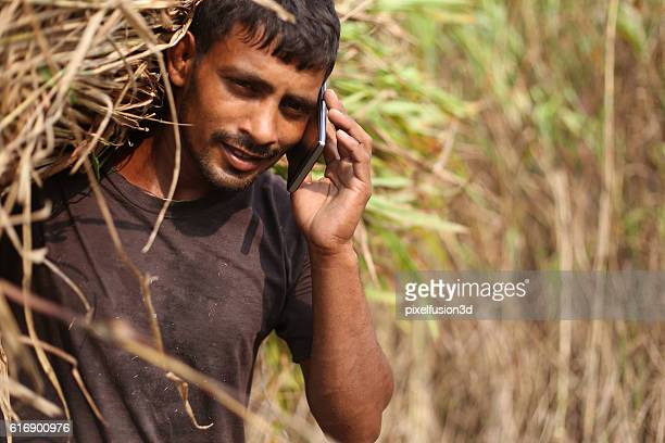 Farmer carrying silage and talking on phone